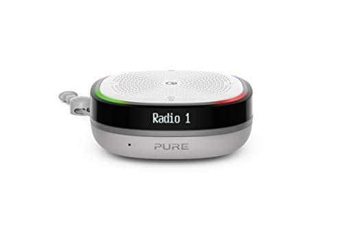 Pure StreamR Splash Radio digital portátil (DAB/DAB+ y FM, altavoces Bluetooth, Alexa, hasta 15 horas de duración de la batería, resistente al agua hasta IP67) - Gris piedra