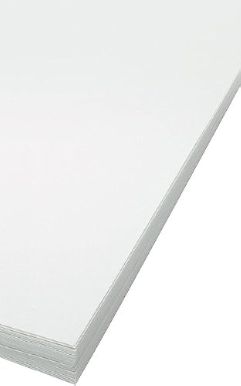 Bee Papier Gateway Trace Pack, Pack, Pack, 9 Zoll von 12 Zoll, 100 Blatt pro Packung B004KPLKXW | Primäre Qualität  c5e6d1