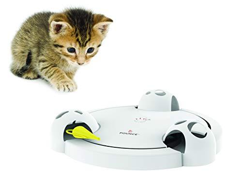 PetSafe Pounce Cat Toy
