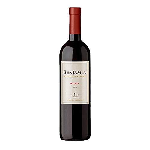 Vinho Argentino Benjamin Nieto Malbec 2018, 750ml