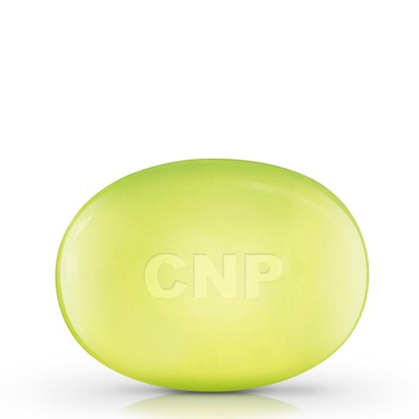 解くハウジング仮定するCNP Laboratory 石鹸A/Soap A 100g [並行輸入品]