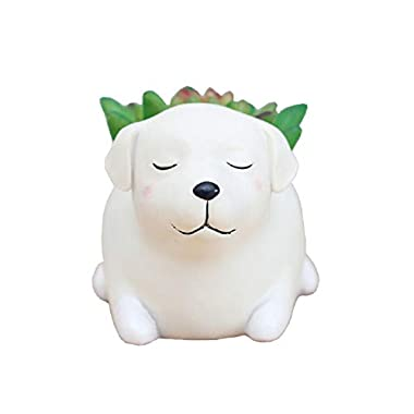 Youfui Home Decor Pot, Animal Succulent Planter Flowerpot Home Office Desk Decoration (Sleep Labrador)