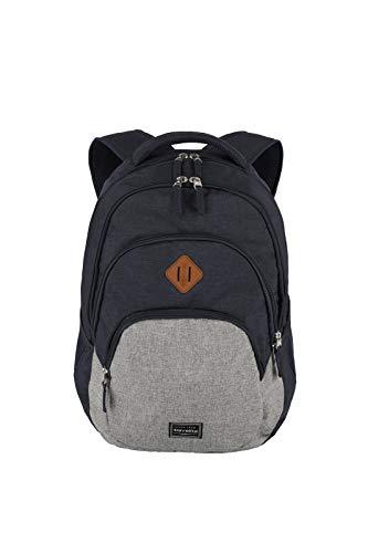 travelite Rucksack Handgepäck mit Laptop Fach 15,6 Zoll, Gepäck Serie BASICS Daypack Melange: Modischer Rucksack in Melange Optik, 096308-20, 45 cm, 22 Liter, marine/grau