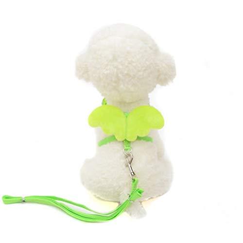 GLANGYU Niedliche Kleine Haustier Hund Katze Brustgeschirr Kragen Sicherheitsgurt Set Verstellbare Outdoor Walking Leine Mit Seil Engel Flügel Kostüm 15 (Color : Green, Size : M)