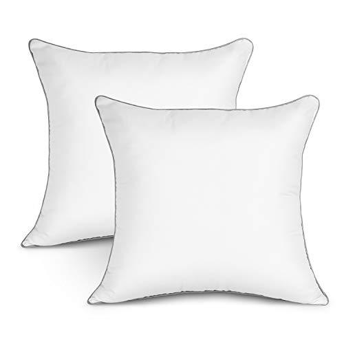 EDOW Luxury Inserts, Soft Down Alternative Square Form Throw Pillow, Cushion,Sham Stuffer,Machine Washable,Cotton Cover, 2pc White