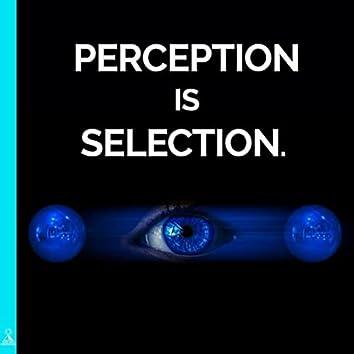 Perception Is Selection. (feat. Jess Shepherd)
