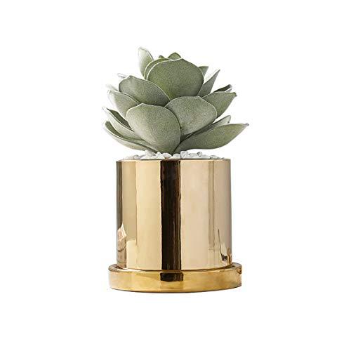 Maceta de cerámica dorada moderna con forma de cactus, maceta decorativa para jardín (tamaño pequeño)