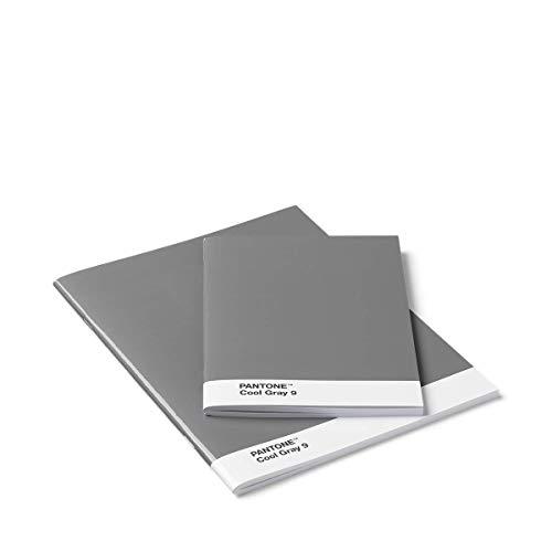 Pantone Blanko-Hefte, Booklet 2er-Set, cool gray 8