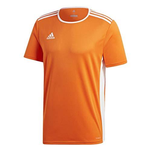 adidas Men's Soccer Entrada 18 Jersey Shirt