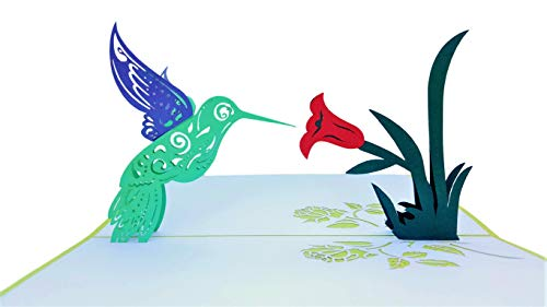 iGifts And Cards Inspirational Hummingbird 3D Pop Up Greeting Card - Encouragement, Happy Birthday, Thinking of You, Get Well, Joy, Half-Fold, Blank, Bird Lover, Cute, Beautiful, Nature, Encouragement