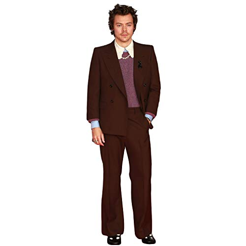 Novelty Native Harry Styles Life Size Standup Cardboard Cutout Standee