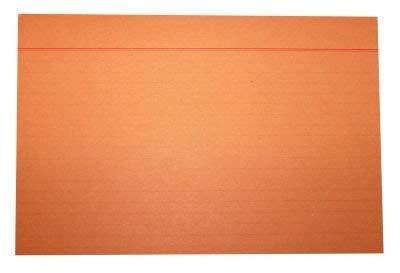 Idena 375054 - indexkaarten DIN A4, 100 stuks, 180 g/m2, houtvrij papier, gelinieerd, oranje