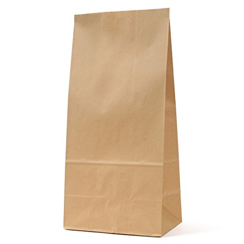 パックタケヤマ 紙袋 マチあり 角底袋 H25 未晒 100枚 XZT00391