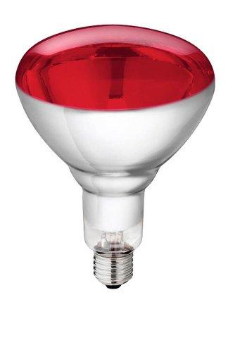 Kerbl gehard glas lamp Philips 150W 240V, rood