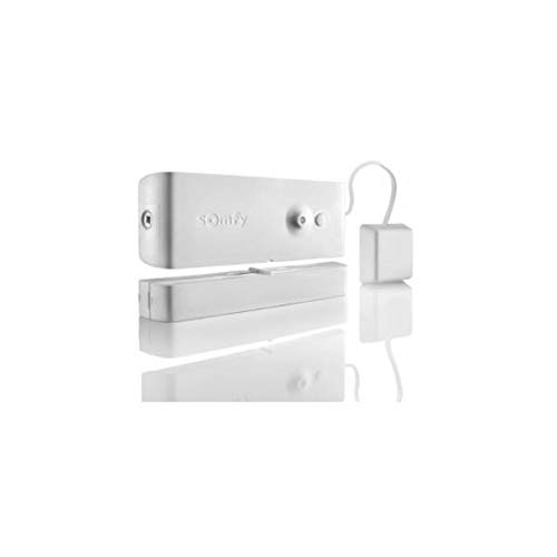 Somfy - Detector de apertura y rotura de cristal blanco para alarma PROTEXIOM y PROTEXIAL