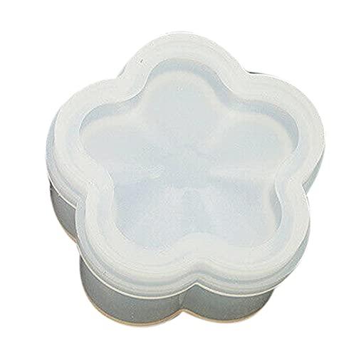 Loriver Caja de Almacenamiento de Joyas de Silicona Molde de Resina Fabricación de moldes Artesanía de fundición Herramienta de Bricolaje