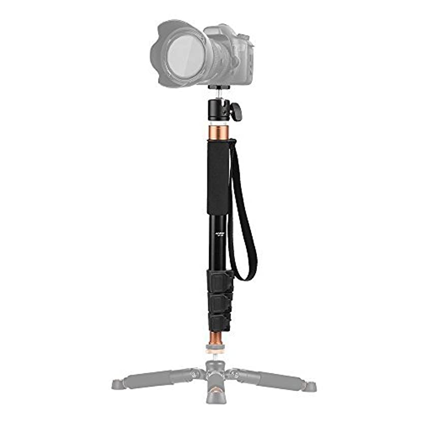 Andoer 4 Section 37.2 Inch Aluminum Monopod with Camera Ballhead 360 Degree for Canon Nikon Sony DV Digital Cameras, Boom Pole for Microphone