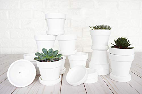 My Urban Crafts 3 Inch Succulent Pots White Mini 12-Pack Round Ceramic Flower Pot with Tray Saucers - Succulent Planter for Small Plants, Clay Pot Crafts, Wedding Favors (Matte White Bisque)