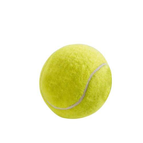 HUNTER Tennisball Lot de 12 Jouets pour Chien 6 cm
