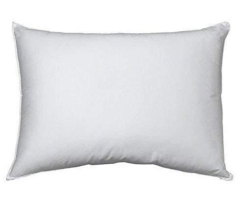 Carpenter  Perfect Choice Gold  Standard Pillow