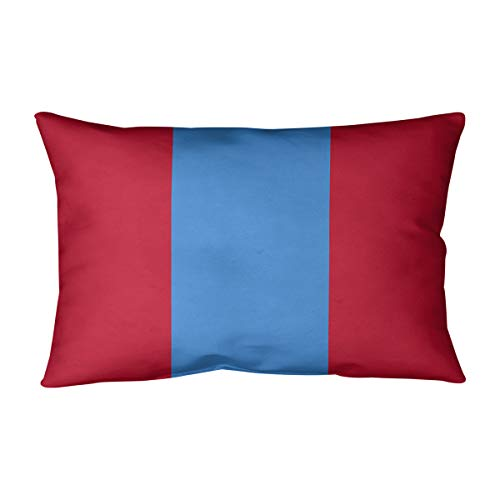 ArtVerse Katelyn Smith 28 x 28 Floor Double Sided Print with Concealed Zipper /& Insert Illinois Pillow