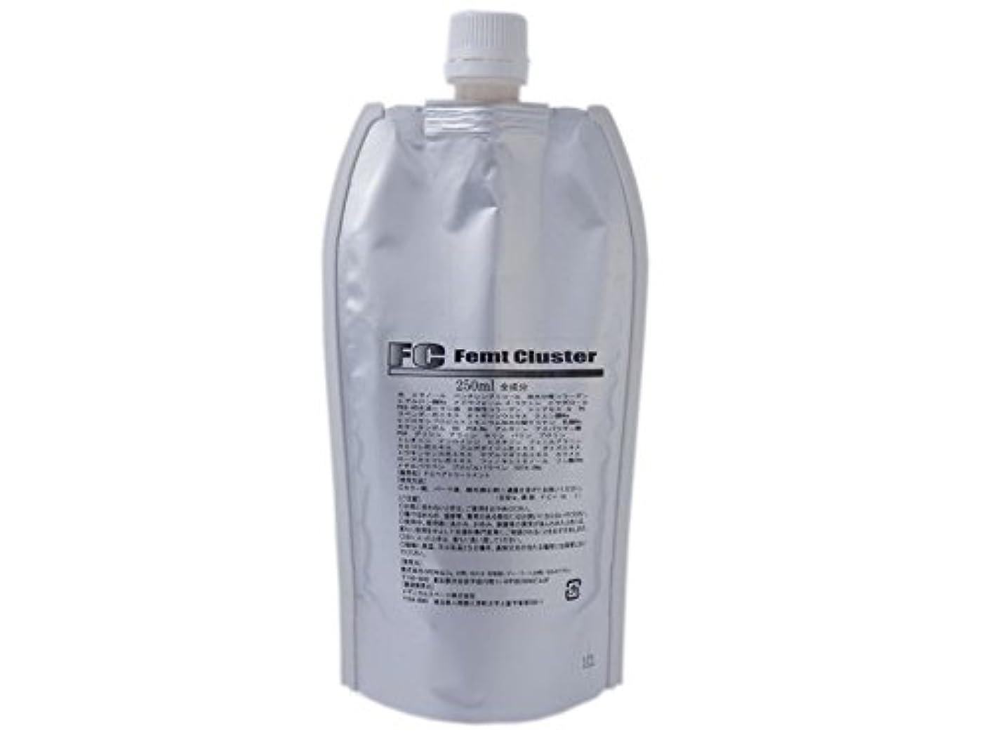 によって見捨てられたロッジフェムトクラスター 業務用添加剤(トリートメント) 250ml