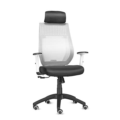 ELECWISH Ergonomic Office Chair, Hign Back Mesh Office Desk Chair with Adjustable Armrest, Hold Up to 300LBS, S-Shape Seat Back, Ergonomic Mesh Computer Desk Chair for Home Office (Grey)