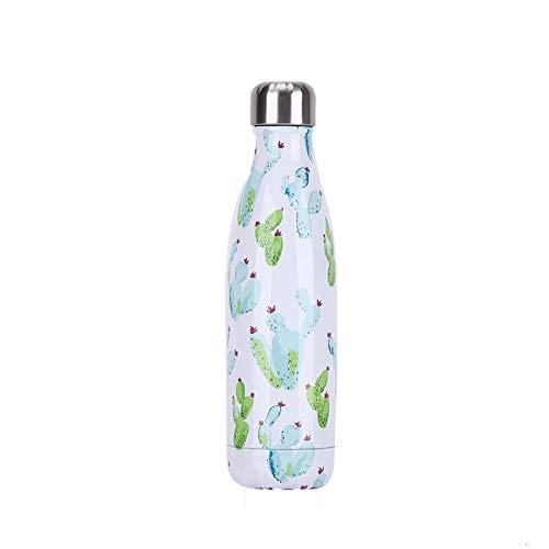 BEI & HONG geïsoleerde waterfles roestvrij staal 500ml - 24 uur koeling & 12 uur houden warm, dubbele ommuurde vacuüm fles dranken fles, BPA-vrij, met reinigingsborstel en motiverende stickers