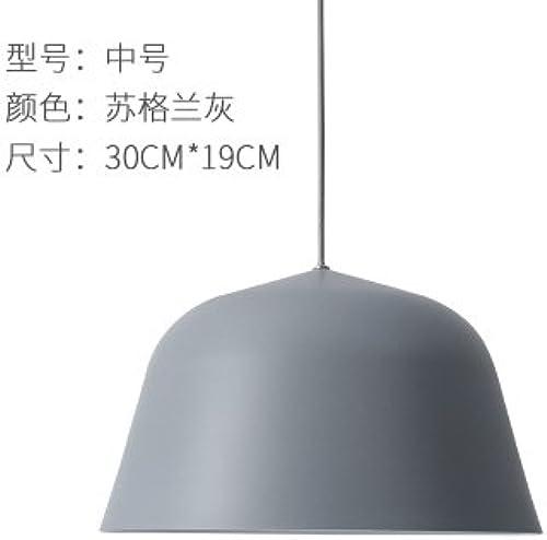 LuckyLibre Tête simple en aluminium simple et moderne lumière Pendentif Chambres Bar Café Restaurant Cuisine Couloir d'éclairage lampe de plafond,Lustre gris 30cm