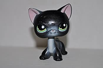 Shorthair Kitten #336  Black Green Eyes  - Littlest Pet Shop  Retired  Collector Toy - LPS Collectible Replacement Single Figure - Loose  OOP Out of Package & Print