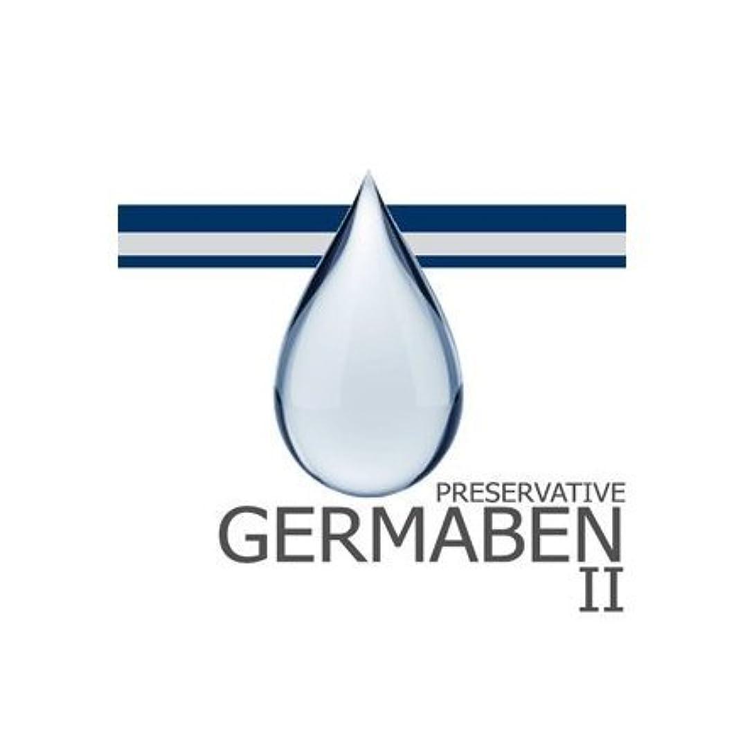 サスペンションしおれた美徳germaben II