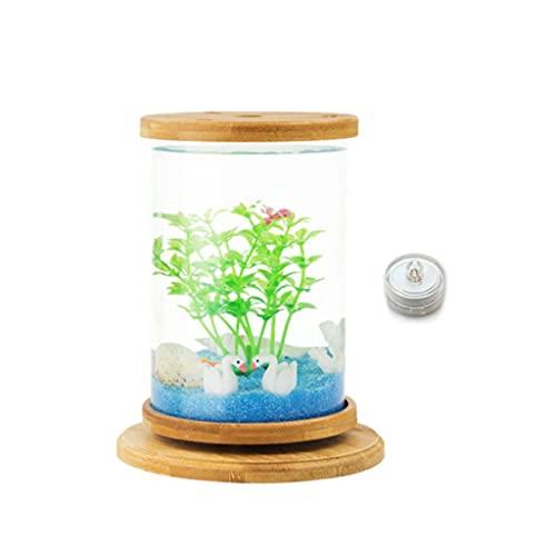 YZERTLH Tanque de Pescado de Escritorio Giratorio Creativo Transparente Vidrio Oficina doméstico Botella ecológica Pequeño Peces Ornamentales Betta Tanque de Pescado
