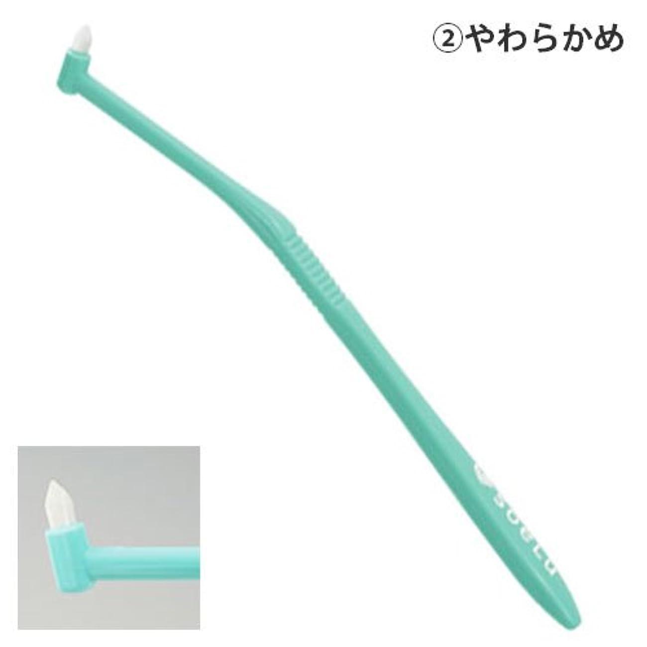 掻くシャワー相反するソエル 歯ブラシ PLUSやわらかめ