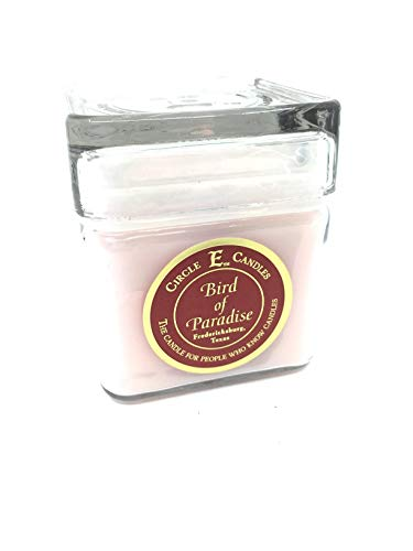Circle E Bird of Paradise Scented Jar Candle   Size 12oz   78 Hour Burn Time   1 Wick   Wax Color Pearl Pink   Glass Jar   Made in USA