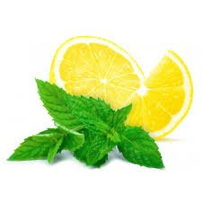 Turkish Mint and Lemon Tea Drink 14 Oz