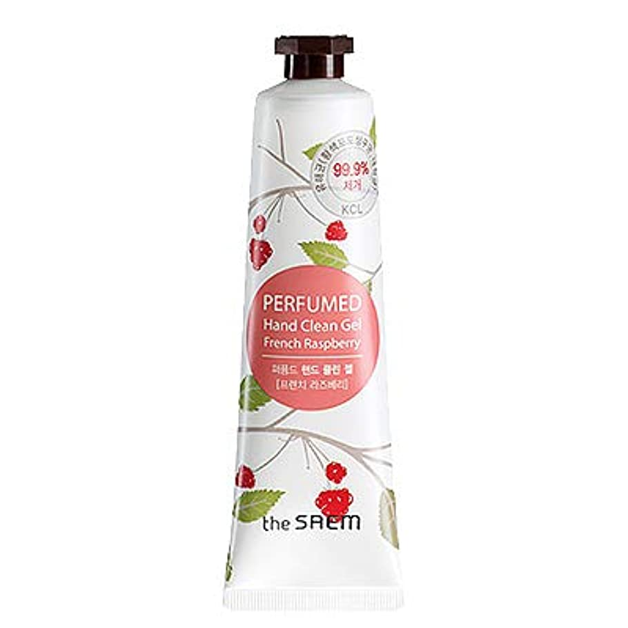 領事館アイロニーケープtheSAEM ザセム パヒューム ハンド クリーン ジェル PERFUMED HAND CLEAN GEL CREAM 韓国コスメ (F-French Raspberry(フレンチラズベリー))