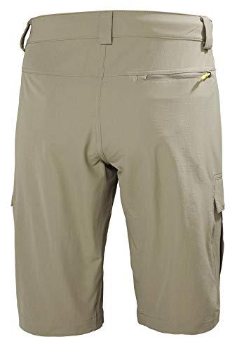 Helly Hansen Men's Hh Qd Cargo 11 Cargo Shorts
