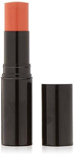 CHANEL Teint LES BEIGES LES BEIGES Blush N° 22 8 g