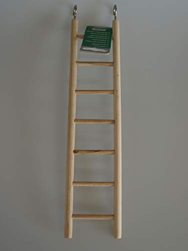 Karlie Sittichleiter - 30 cm
