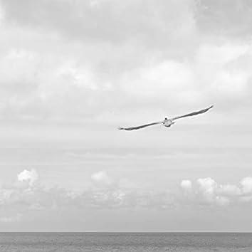 Life in Balance | Yoga and Meditation