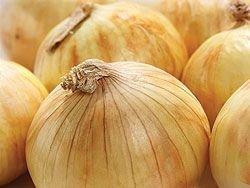 Yellow Sweet Spanish Onion Seeds, 750 Heirloom Seeds Per Packet, Non GMO Seeds, Isla's Garden Seeds