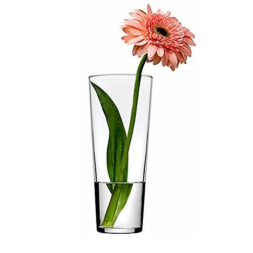 Unishop - Vaso di fiori in vetro, Conico in vetro, altezza 26 cm, elegante e sofisticato