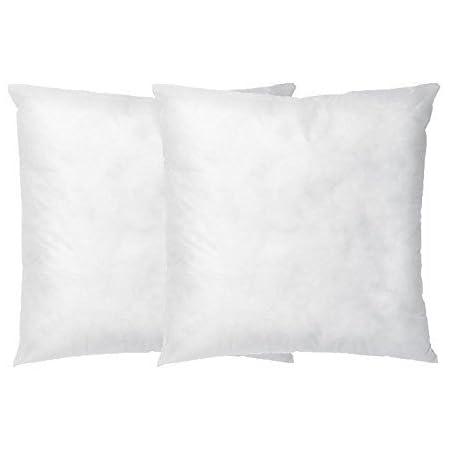 Amazon Com Dreamhome Square Poly Pillow Insert 18 L X 18 W 2 Home Kitchen