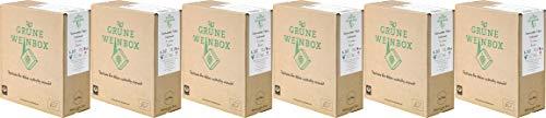 Staatsweingut Freiburg Grauburgunder 2,25 L GRÜNE WEINBOX Weinschlauch 2019 Trocken Ecovin Bio (6 x 2.25 l)