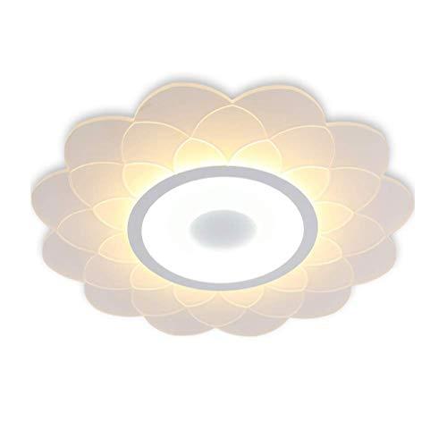 Modern Art Nouveau Deco Acryl lampenkap kroonluchter voor binnen eetkamer Hotel LED plafondlamp woonkamer lamp dimbaar slaapkamer plafondlamp met afstandsbediening