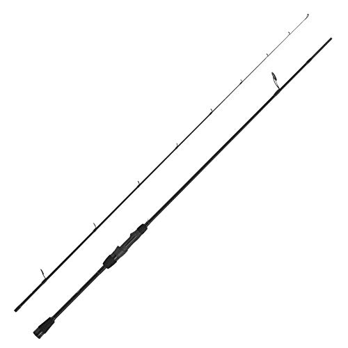 WFT Penzill Black Spear Drop Shot 2,70m 5-45 g
