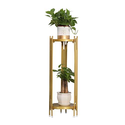 Nordic mode metalen bloemenstandaard plantenrek, woonkamer sofa tv-kast dubbele bonsai tentoonstellingsstandaard, licht moderne eenvoudige bloempot rek decoratie frame, goud