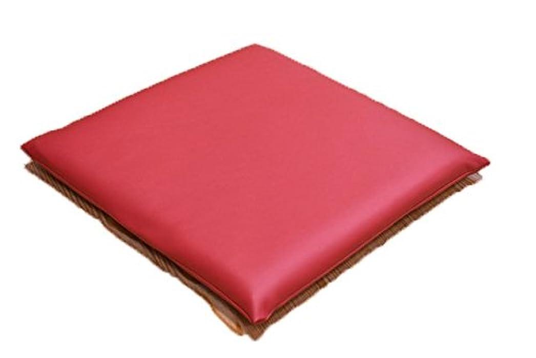 雄弁左かもめPVCレザークッション 3層ウレタン 小座布団 45×45cm 耐久性 水に強い 日本製 飲食店 業務用  (レッド)