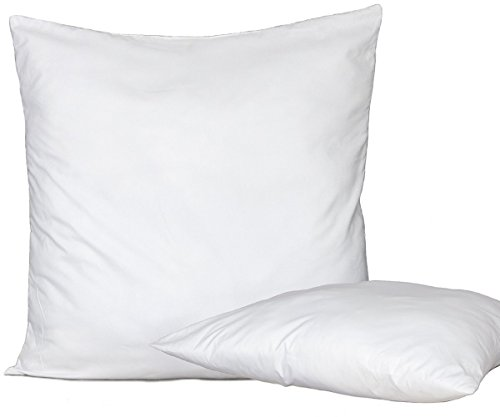 Bed Store® Set 4 Pezzi Anima Imbottitura anallergica per Cuscini Divano, Poltrona, Letto da Rivestire in Quattro Misure (60 X 60)