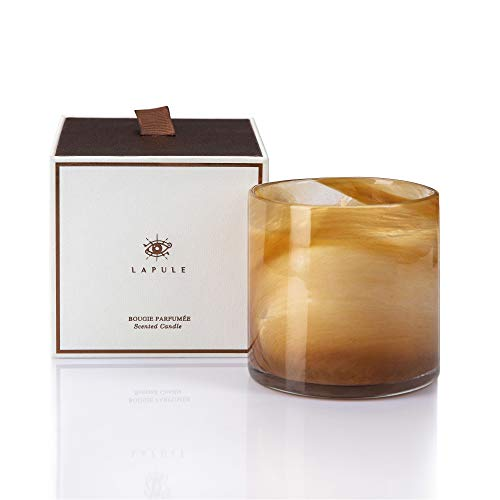 Lapule Luxury Wood Scented Candle in Handblown Decorative Glass Jar | Long Burning Aromatherapy Soy Wax Candles with Natural Fragrance Essential Oils | for Men Gifts | Home and Bath Decor